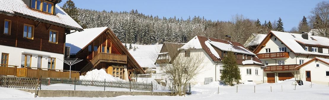 Blackforest Village Winter